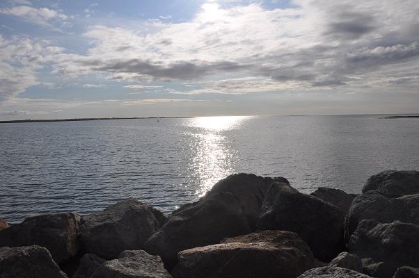 Kust tijdens stadswandeling in Reykjavik op wandelreis in IJsland