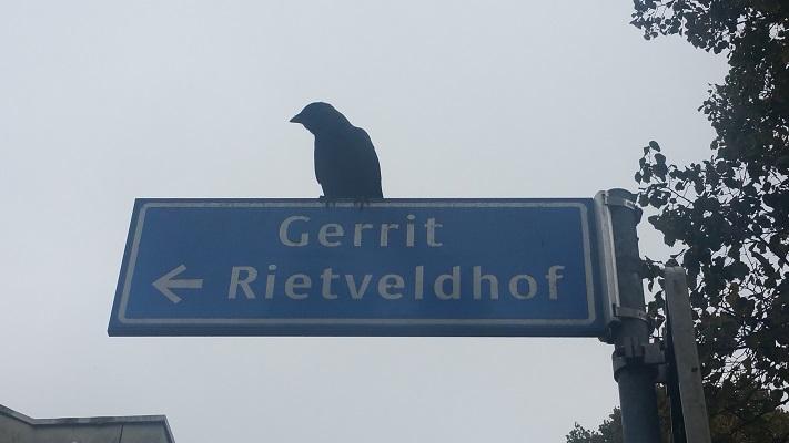 Gerrit Rietveldhof tijdens Gerrit Rietveld wandelroute in Utrecht