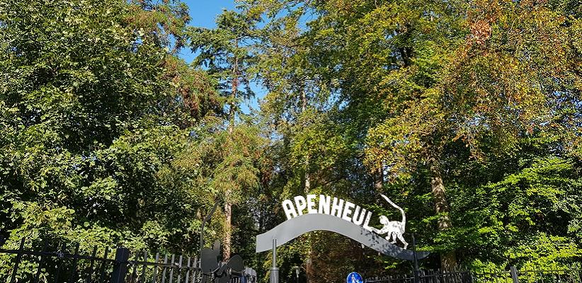 Apenheul Apeldoorn op een wandeling over het Roots Natuurpad van Apeldoorn naar Hoenderloo