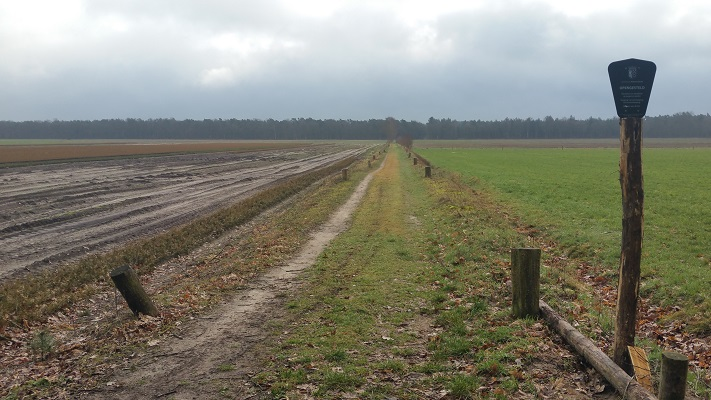 Landgoed Gorp en Roovert op een wandeling over het Roots Natuurpad van Biest-Houtakker naar Gorp