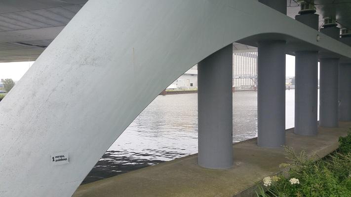 Julian J. Ewellbrug over Zuid-Willemsvaart op wandeling over het Roots Natuurpad van Schijndel naar Veghel