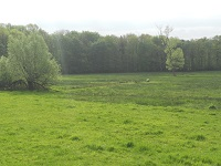 Oldenzaal op wandeling over Twentepad van Oldenzaal naar De Hooge Lutte