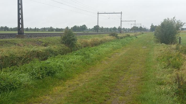 Wandelen over het Westerborkpad langs spoorlijn Zwolle-Meppel