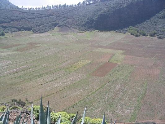 Kraterwandeling van San Bartolome naar Montana las Tierras tijdens een wandelvakantie op Canarisch Eiland Gran Canaria