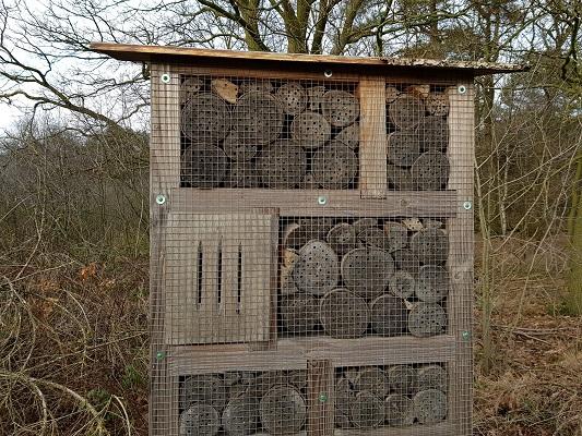 Insectenhotel tijdens IVN-wandeling Bernhoven in Uden
