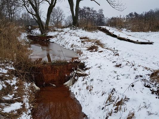 Kwelwater wijstgronden tijdens IVN-wandeling Over Peelrandbreuk en wijstgronden in Uden