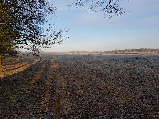 Landschap bij Wolfheze op een wandeling over Klompenpad Molenbeeksepad bij Wolfheze