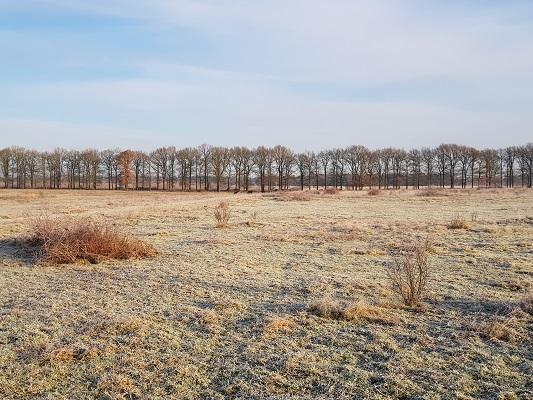 Duitse Kampweg Wolfheze op een wandeling over Klompenpad Molenbeeksepad bij Renkum