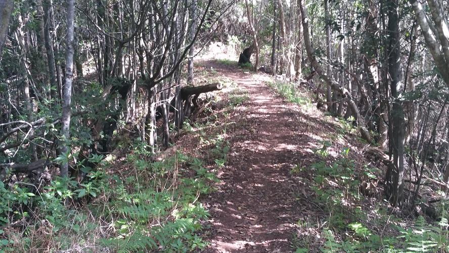 Wandelpad bij Vallehermoso Valle Gran Rey Wandelpad hoog boven Barranco de Erque tijdens wandeling op een wandelvakantie op La Gomera op de Canarische Eilanden