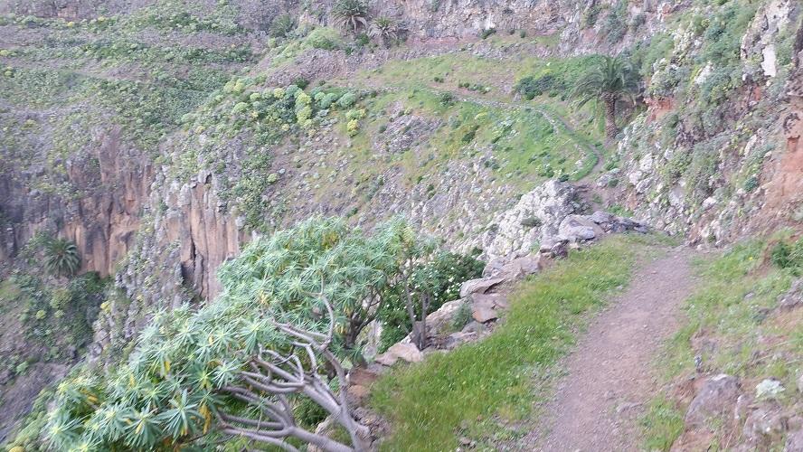 Wandelpad naar Alojera Valle Gran Rey Wandelpad hoog boven Barranco de Erque tijdens wandeling op een wandelvakantie op La Gomera op de Canarische Eilanden