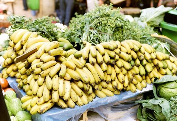 Bananen op markt bij Canicaltunnel op wandelvakantie op Portugees eiland bloemeneiland Madeira