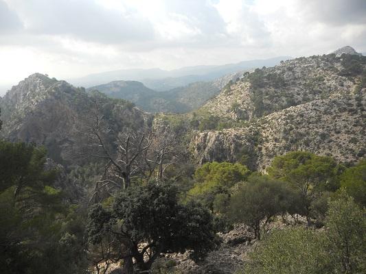 Landschap bij Alqeria op wandelvakantie in Tramuntanagebergte op Spaans eiland Mallorca