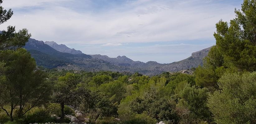 Landschap bij Port de Soller op wandelvakantie in Tramuntanagebergte op Spaans eiland Mallorca