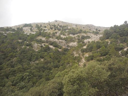 Bergen bij Valledemossa op wandelvakantie in Tramuntanagebergte op Spaans eiland Mallorca