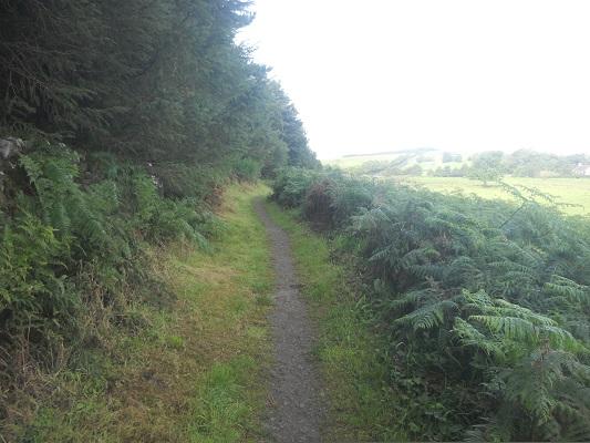 Wandelpad op een wandeling van Heddon on Wall naar Chollerford op een wandelreis over de Muur van Hadrianus in Engeland