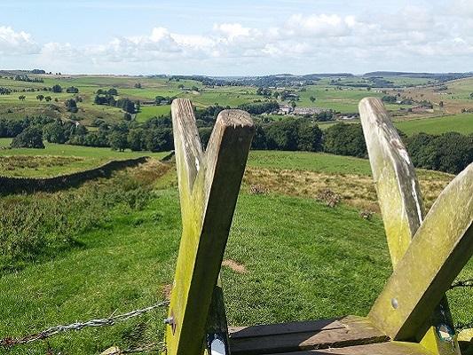 Steekover in landschap bij de Muur op een wandeling van Once Brewed naar Lanercost op wandelreis over Muur van Hadrianus in Engeland