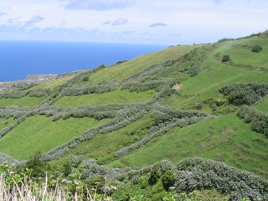 Landschap en percelen bij Sete Cidades tijdens een wandelvakantie op eiland Sao Miguel op de Azoren