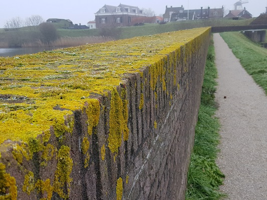 Dijkmuur vesting Willemstad tijdens een wandeling over het Zuiderwaterliniepad van Dinteloord naar Willemstad
