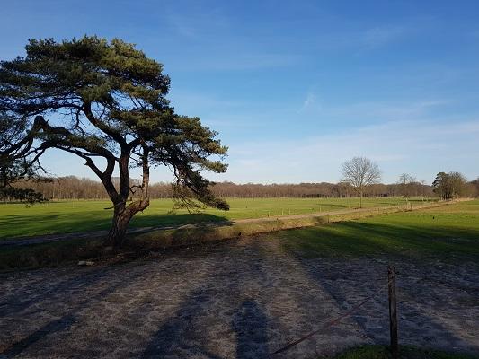 Landgoed Groeneveld tijdens een NS-wandeling Landgoed Groeneveld van Baarn naar Hilversum