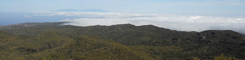 Nationaal Park Garajonay op Canarisch eiland La Gomera
