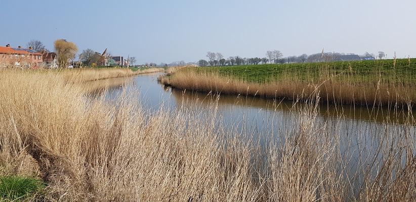 Wandelen over het Noord-Hollandpad van Nieuwesluis naar Den Oever langs het Amstelmeerkanaal