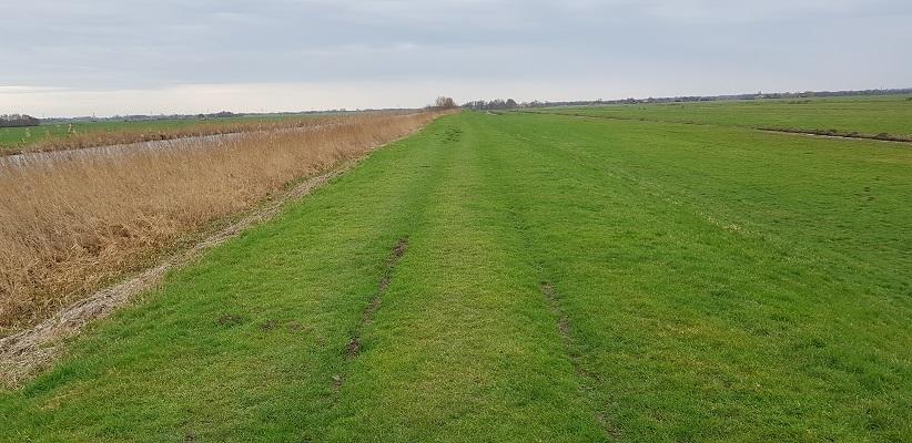 Wandelen over het Romeinse Limespad langs de Enkele Wiericke