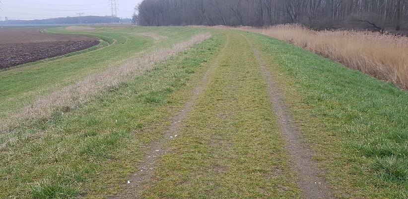 Dijk langs de Donge op een wandeling over de Zuiderwaterlinie van Oosterhout via Geertruidenberg naar Hooipolder