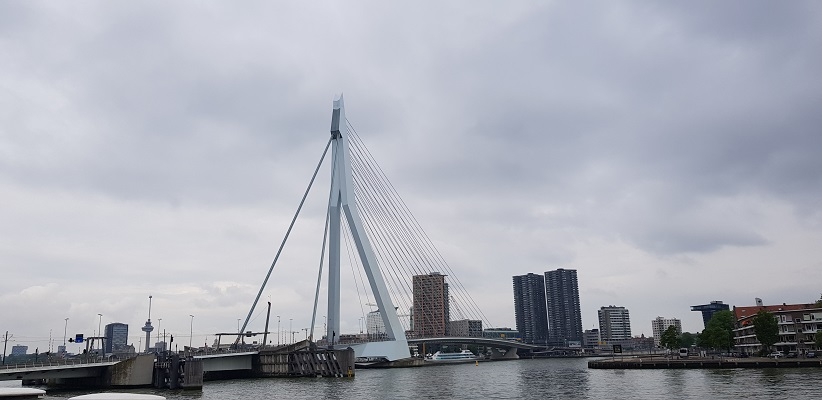 NS-wandeling Rotterdam Maasstad bij de Erasmusbrug de Zwaan