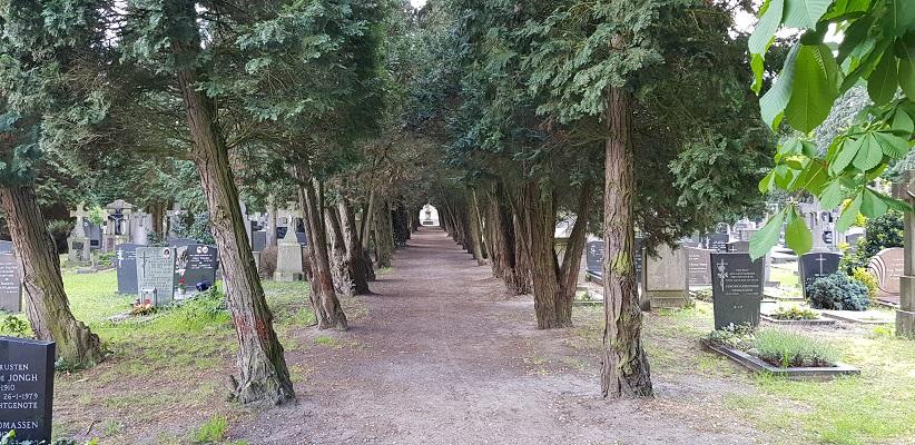 Wandeling van Gegarandeerd Onregelmatig over het Parkstadpad van Wandelen buiten de binnenstad van EIndhoven in het kerkhof in Stratum
