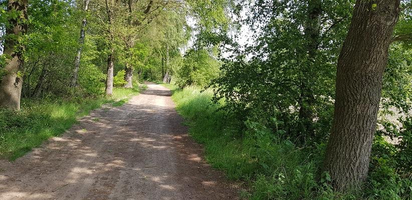 Wandelen buiten de binnenstad van Eindhoven over het Batapad op onverharde weg naar Best