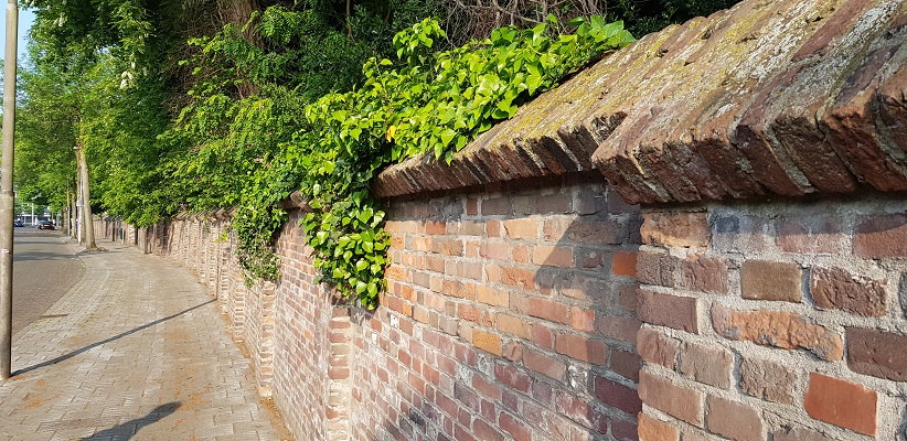 Wandeling buiten de binnenstad van Eindhoven over het Gestelpad bij kloostermuur in Gestel