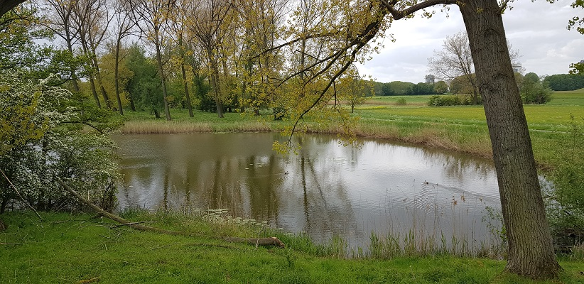 Wandeling over het vernieuwde Waterliniepad van Woudrichem via voetveer naar Slot Loevestein bij de Nieuwendijk