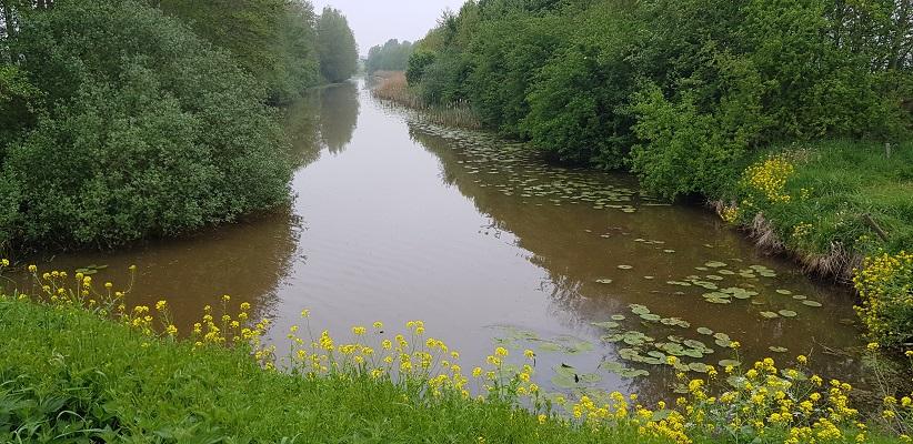 Wandeling over het vernieuwde Waterliniepad van Woudrichem via voetveer naar Slot Loevestein langs de Donge