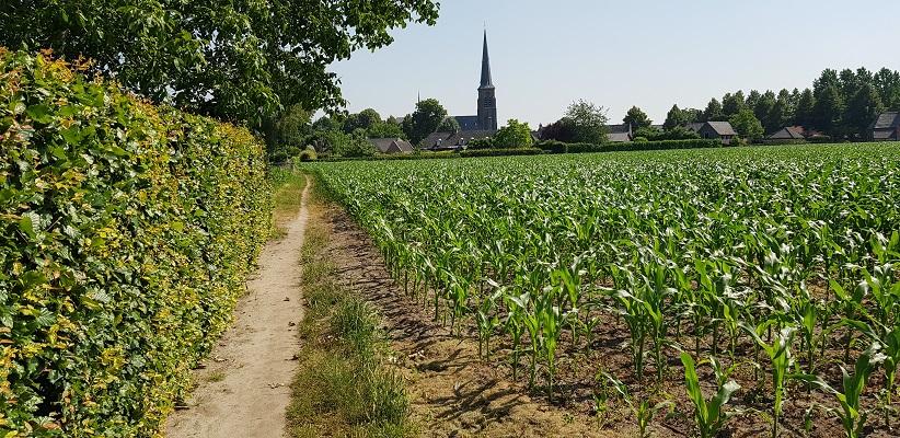 Ik maakte een wandeling, een trage tocht door het Dommdal bij Liempde