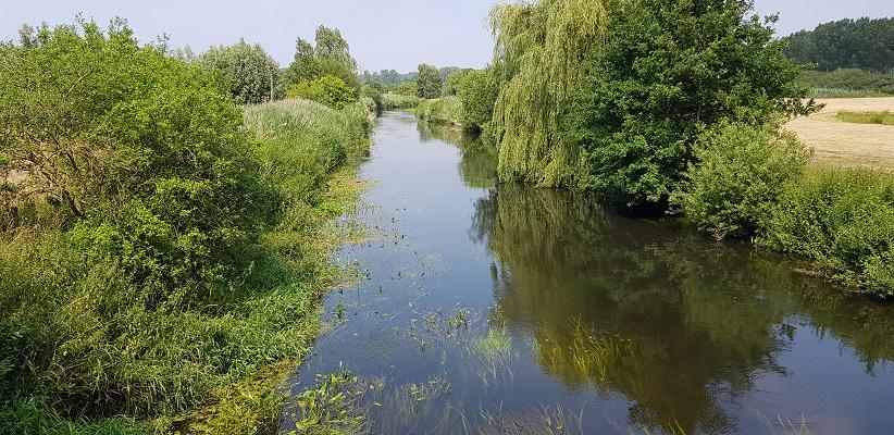 Ik maakte een wandeling, een trage tocht door het Dommdal bij Liempde bij het riviertje de Dommel