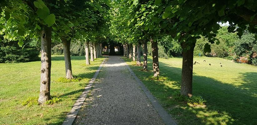 Ik maak een wandeling met de gids van Gegarandeerd Onregelmatig Buiten de binnenstad van Nijmegen over het Wijchenpad door het Kometenpark