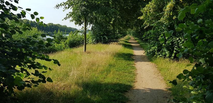 Wandeling met de gids van Gegarandeerd Onregelmatig Buiten de binnenstad van Nijmegen over het Wijchenpad langs het Maas-Waalkanaal