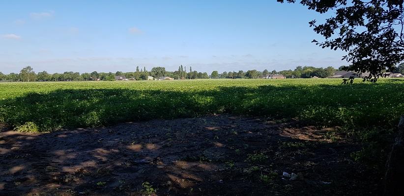 Wandeling over het Airbornepad van Kempervennen naar Genneper Park in EIndhoven