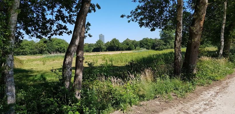 Wandeling over het Airbornepad van Kempervennen naar Genneper Park in EIndhoven met uitzicht op kantoor ASML