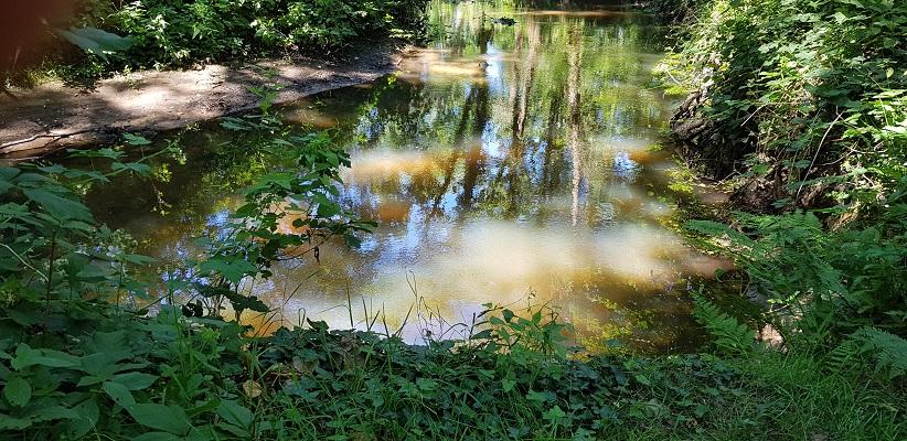 Wandeling over het Airbornepad van Kempervennen naar Genneper Park in EIndhoven langs de Tongelreep