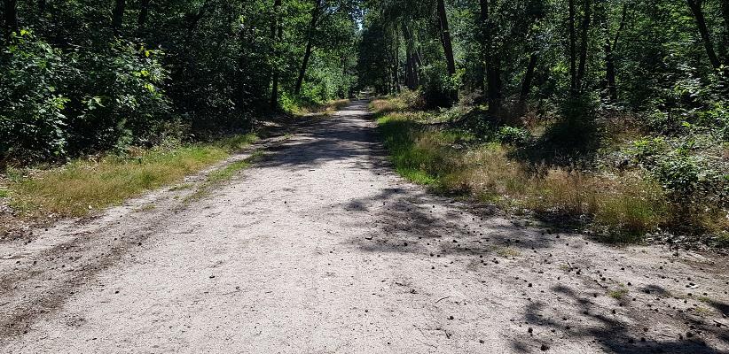 Trage tocht over de Utrechtse Heuvelrug bij Veenendaal