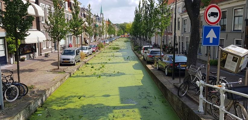 Wandelen in Delfland in Centrum Delft langs de grachten