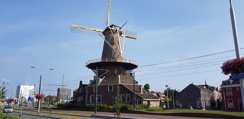 Wandelen in Delfland in Centrum Delft bij molen de Roos
