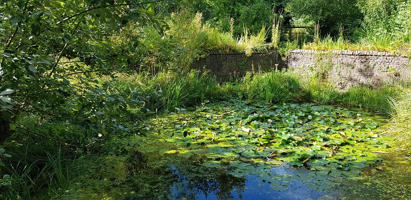 Wandelen buiten de binnenstad van Arnhem over het Parkenpad in de Watertuin