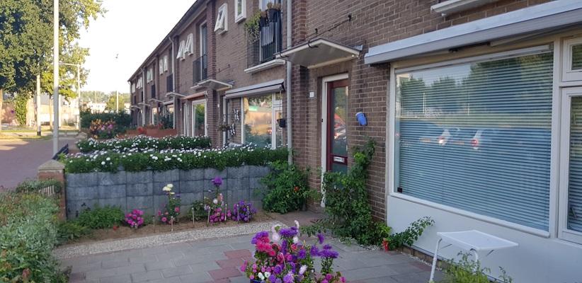 Wandeling door Vogelaarwijken in Arnhem van Gegarandeerd Onregelmatig in de wijk Malburgen