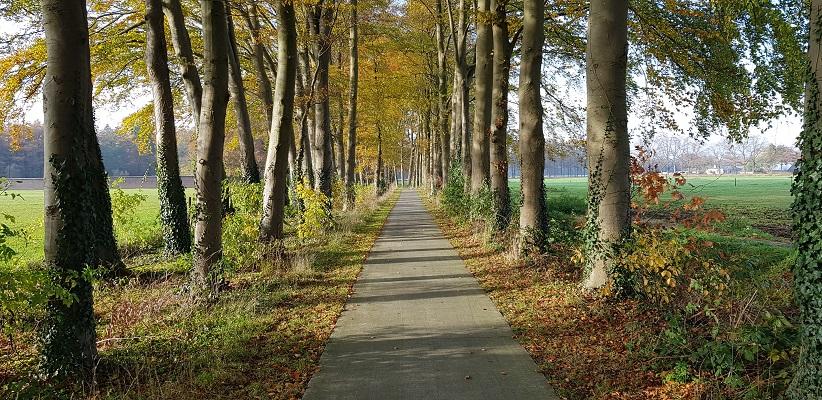 Wandeling over Trage Tocht Engelenburg bij Brummen