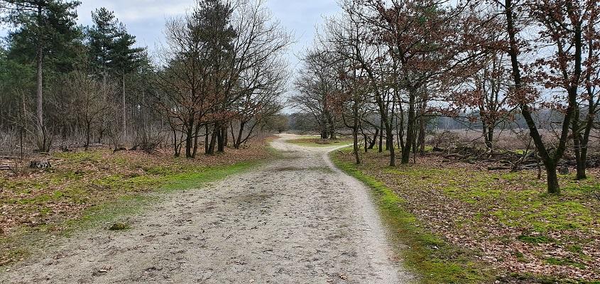 Wandeling over de mooiste zandwegen van Uden bij de Keelweg op Slabroek