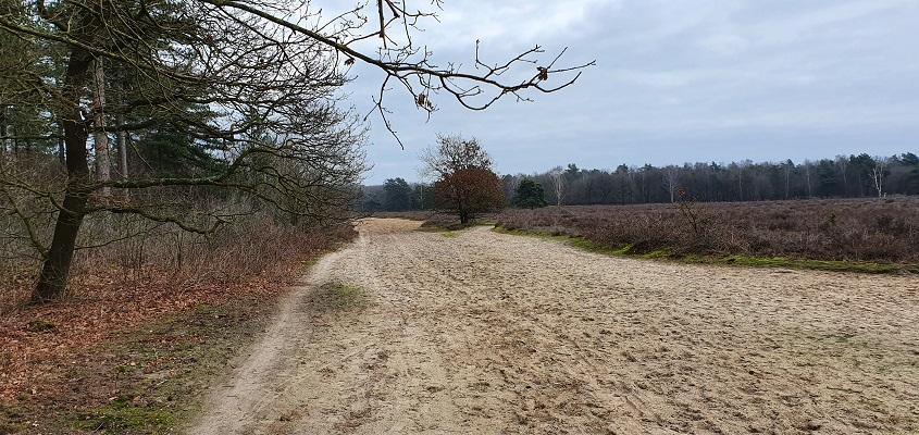 Wandeling over de mooiste zandwegen van Uden op de Keelweg op Slabroek
