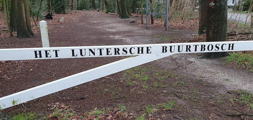 Wandeling over Trage Tocht Lunteren bij het Luntersche Buurtbos