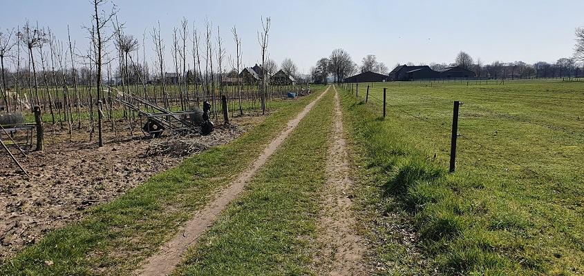 Wandeling Graancirkel in Oploo